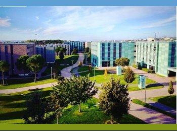 EasyStanza IT - CAMPUSX STUDENT'S RESORT, Ciampino - € 270 al mese