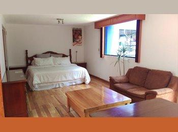 CompartoDepa MX - Cuarto con jardín en hermosa casa en coyoacán!!, Coyoacán - MX$6,400 por mes
