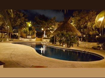CompartoDepa MX - La ceiba , Cancún - MX$3,000 por mes