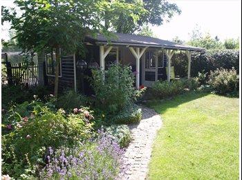 EasyKamer NL - gardenhouse for a female foreign student , Leiden - € 475 p.m.