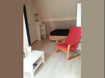 EasyKamer NL - Mooie zonnige zolderkamer met openslaande deuren, Amstelveen - € 475 p.m.