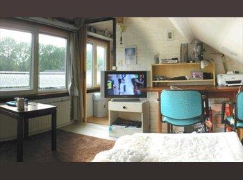 EasyKamer NL - Large furnished room near HAN and Larenstein, Arnhem - € 465 p.m.