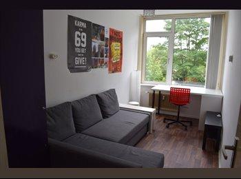 EasyKamer NL - Studentenhuis, Deventer - € 273 p.m.
