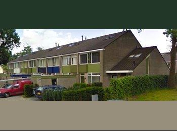 EasyKamer NL - Te huur kamer in Almelo €310,- All-in, Almelo - € 310 p.m.
