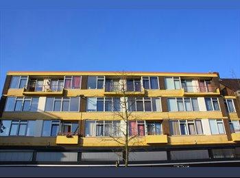 EasyKamer NL - Te huur grote kamer met balkon in Centrum Hengelo €425,- All-in, Hengelo - € 425 p.m.