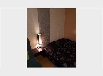 EasyKamer NL - Room: international tenants, Rijswijk - € 500 p.m.