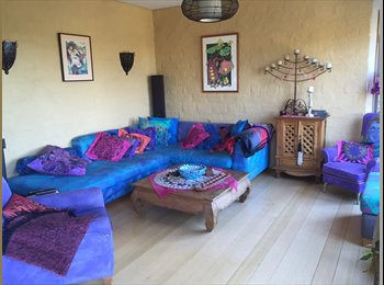 NZ - Respectful flatmate for funky house, Nelson - $150 pw