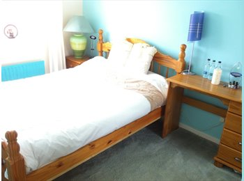 EasyRoommate UK - Your Preference chose a Double or Single room with  BILL'S INC.   for a professional female., Bilston - £315 pcm