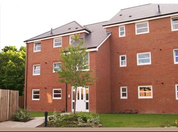 EasyRoommate UK - Luxury Privately Enclosed Apartment in Olton / Acocks Green, South Yardley - £550 pcm