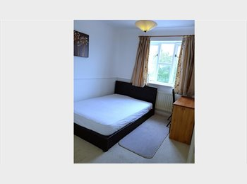 EasyRoommate UK - Professional house share in Mill Road- Colchester, Colchester - £370 pcm