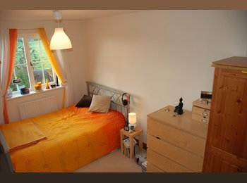 EasyRoommate UK - Room with private bathroom in quiet rural location., Alton - £350 pcm