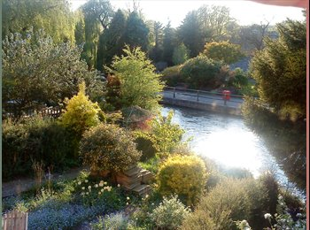 EasyRoommate UK - Stunning River Views: Double room  in House overlooking Itchen River, Winchester - £650 pcm