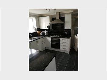 EasyRoommate UK - Nice room near the University & Tesco, Guildford - £500 pcm