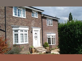 EasyRoommate UK -   Large Sunny Double Room  in Quiet House avail now , Winchester - £515 pcm
