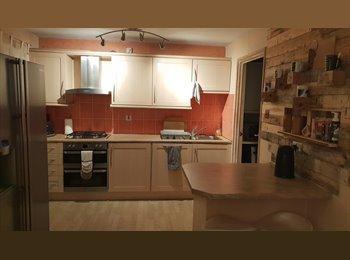 EasyRoommate UK - One single room to rent/house share in Bracknell, Bracknell - £330 pcm