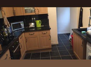EasyRoommate UK - big double room in beautiful house and tripple room, Pontypridd - £275 pcm
