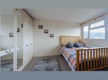EasyRoommate UK - Fab Room to rent in Grove Hill-SPOTLESS HOUSE !!!, Hemel Hempstead - £450 pcm