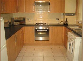 EasyRoommate UK - Room available in Friendly Houseshare, Harborne - £350 pcm