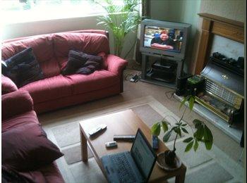 EasyRoommate UK - Comfortable 3 bed flatshare in west end, parking, Partick - £375 pcm