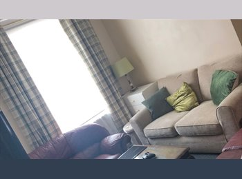 EasyRoommate UK - Norfolk Apartment, Student  4 bed Flat for rent - , Upperthorpe - £250 pcm