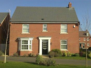 EasyRoommate UK -  4 bedroom house  - Room (1) £450 / Room (2) £450, Hinckley - £450 pcm