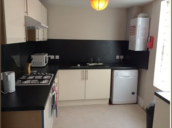 EasyRoommate UK - Looking for a house in the city centre for September?, Plymouth - £390 pcm