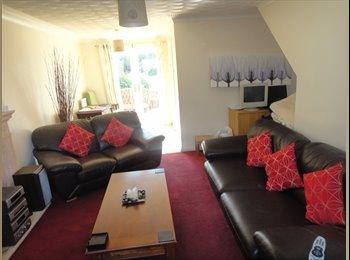 EasyRoommate UK - BEAUTIFUL  BIG DOUBLE EN SUITE ROOM , Bridgend - £380 pcm