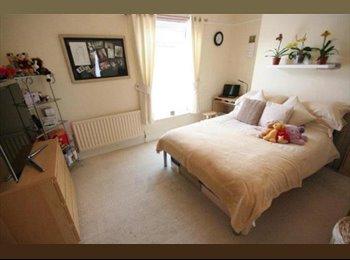 EasyRoommate UK - Furnished Room Available Close to Uni and Bev Road, Botanic - £280 pcm