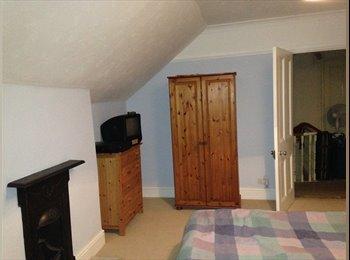 EasyRoommate UK - One Double room-available, Saint Leonards-on-sea - £350 pcm