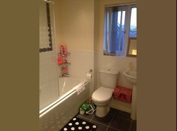 EasyRoommate UK - Cheap double bedroom with ensuite in shared house, Filton - £475 pcm