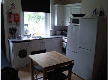EasyRoommate UK - Two housemates needed, Sharrow - £240 pcm