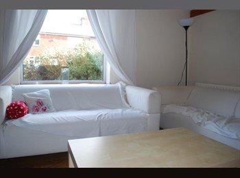 EasyRoommate UK - Great Standard Professional House Share, Headingley - £325 pcm