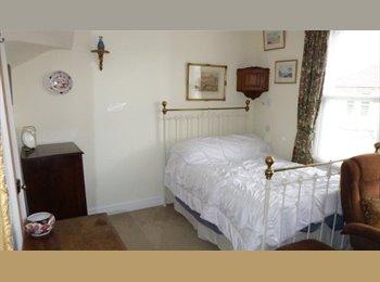 EasyRoommate UK - Nice room in central Bath, Bath - £350 pcm