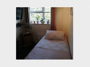 EasyRoommate UK - SINGLE ROOM TO RENT, Arboretum - £300 pcm