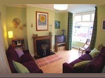 EasyRoommate UK - Nice 4 bed house in quiet street, Meanwood - £350 pcm