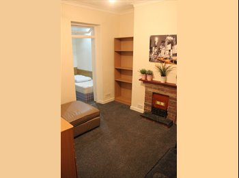 EasyRoommate UK - Professional House let, Adamsdown - £395 pcm