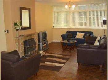 EasyRoommate UK - Large Double Room, in friendly houseshare., Deeside - £320 pcm