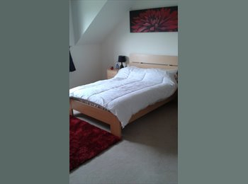 EasyRoommate UK - room to rent mon-fri, Chesterfield - £347 pcm