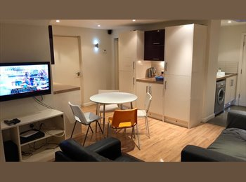 EasyRoommate UK - PROFFESSIONAL ROOM ****URGENT****ONLY ONE AVAILABLE, Preston - £350 pcm