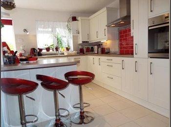 EasyRoommate UK - Large Double room Basildon from £450, Basildon - £450 pcm