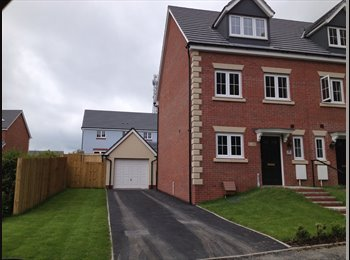 EasyRoommate UK -  2 x Double bedrooms available for rent, Carmarthen - £395 pcm