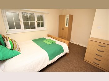 EasyRoommate UK - Two Lovely Rooms Available - Close to Basildon town centre!, Basildon - £515 pcm