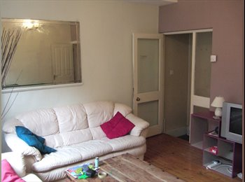 EasyRoommate UK - lovely post grad/final year student house close to, Leeds - £365 pcm