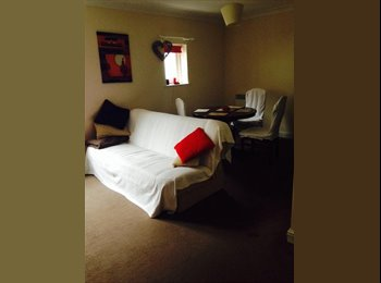 EasyRoommate UK - Down to earth and fun  yet responsible and clean, Canterbury - £390 pcm