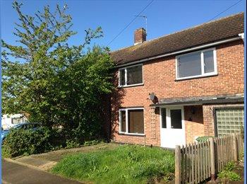 EasyRoommate UK - New houseshare with one single room, Basildon - £360 pcm