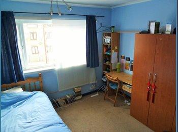 EasyRoommate UK - LARGE DOUBLE STUDY B'ROOM friendly shared house, Netherthorpe - £274 pcm