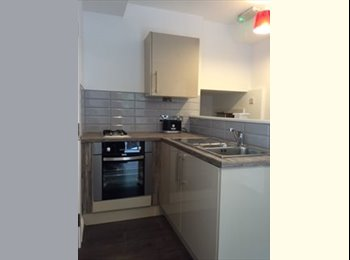 EasyRoommate UK - Brand New Studio Apartment- Bills Inc- City Centre, Liverpool - £550 pcm