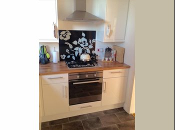EasyRoommate UK - Furnished double room in semi detached property, Peverell - £370 pcm