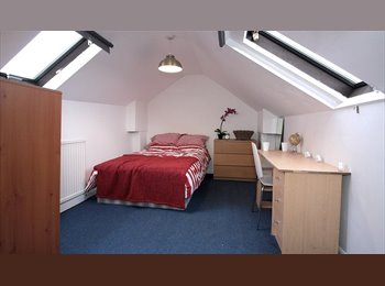EasyRoommate UK - Two Double Rooms Gloucester Rd £450 and £480 PCM, Horfield - £450 pcm
