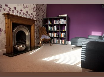EasyRoommate UK - Arty Special Home , Nether Edge - £400 pcm